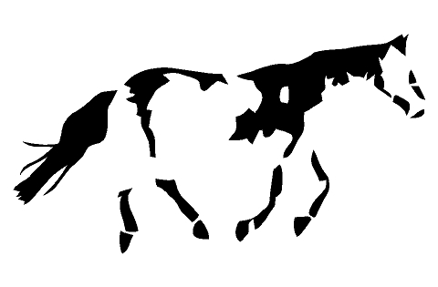 Paint Horse Sticker Decal