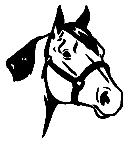 Quarter Horse Sticker Decal
